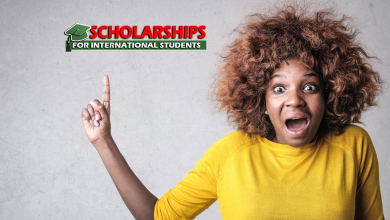What is a Scholarship Position for International Students to work and study abroad