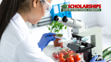 PhD Scholarships in Food Microbiology at Wageningen University and Research, Netherlands